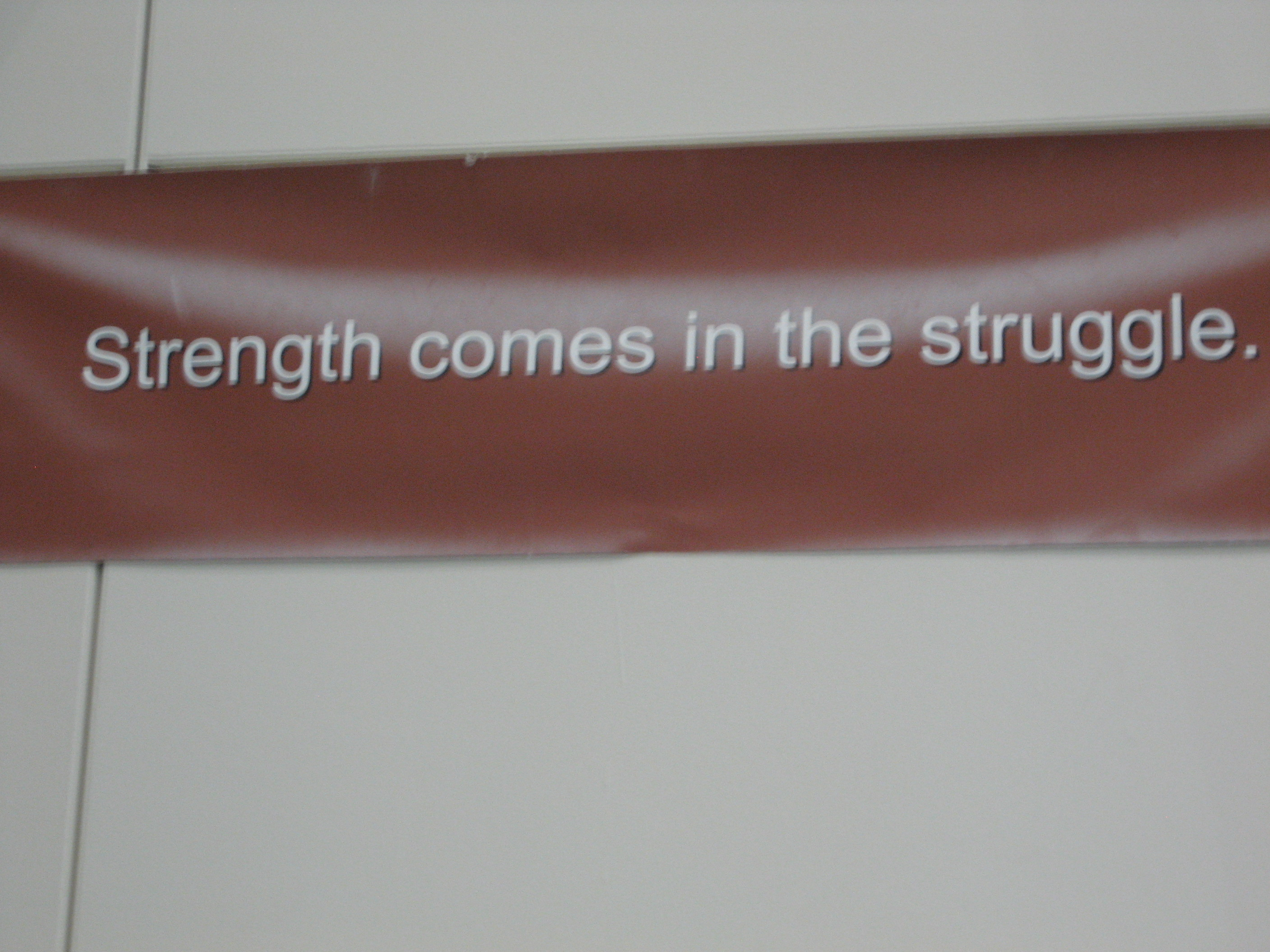 strength comes in the struggle!